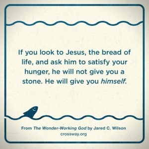 Jared Wilson Wonder Working God Quote 2